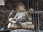 Brass Buddha statue with resting Pigeons
