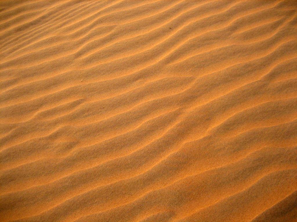 In the morning we spent a little more time enjoying the desert dunes
